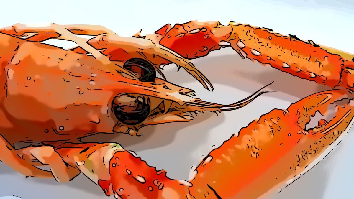 Crayfish header comic