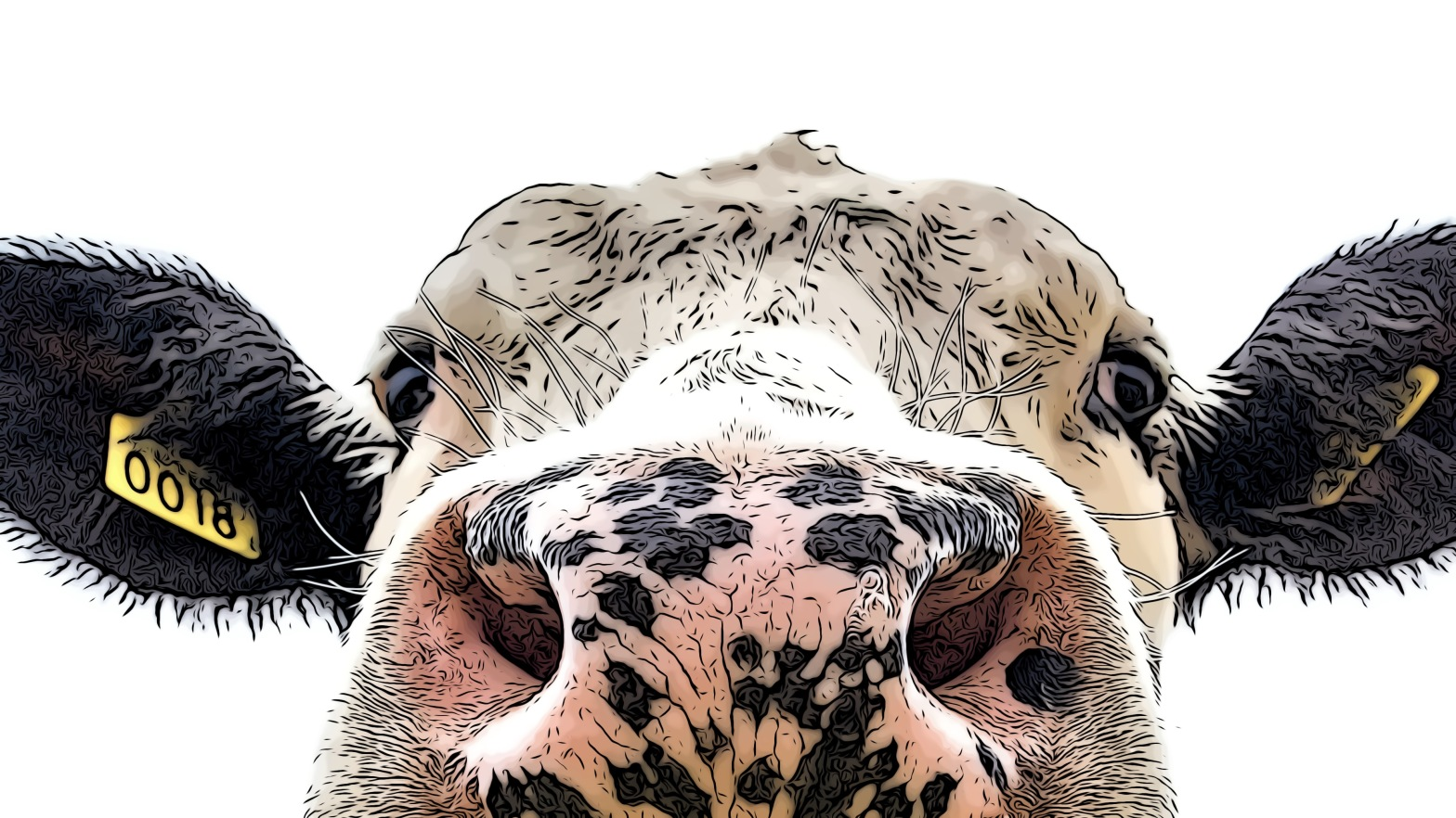 Cow header comic