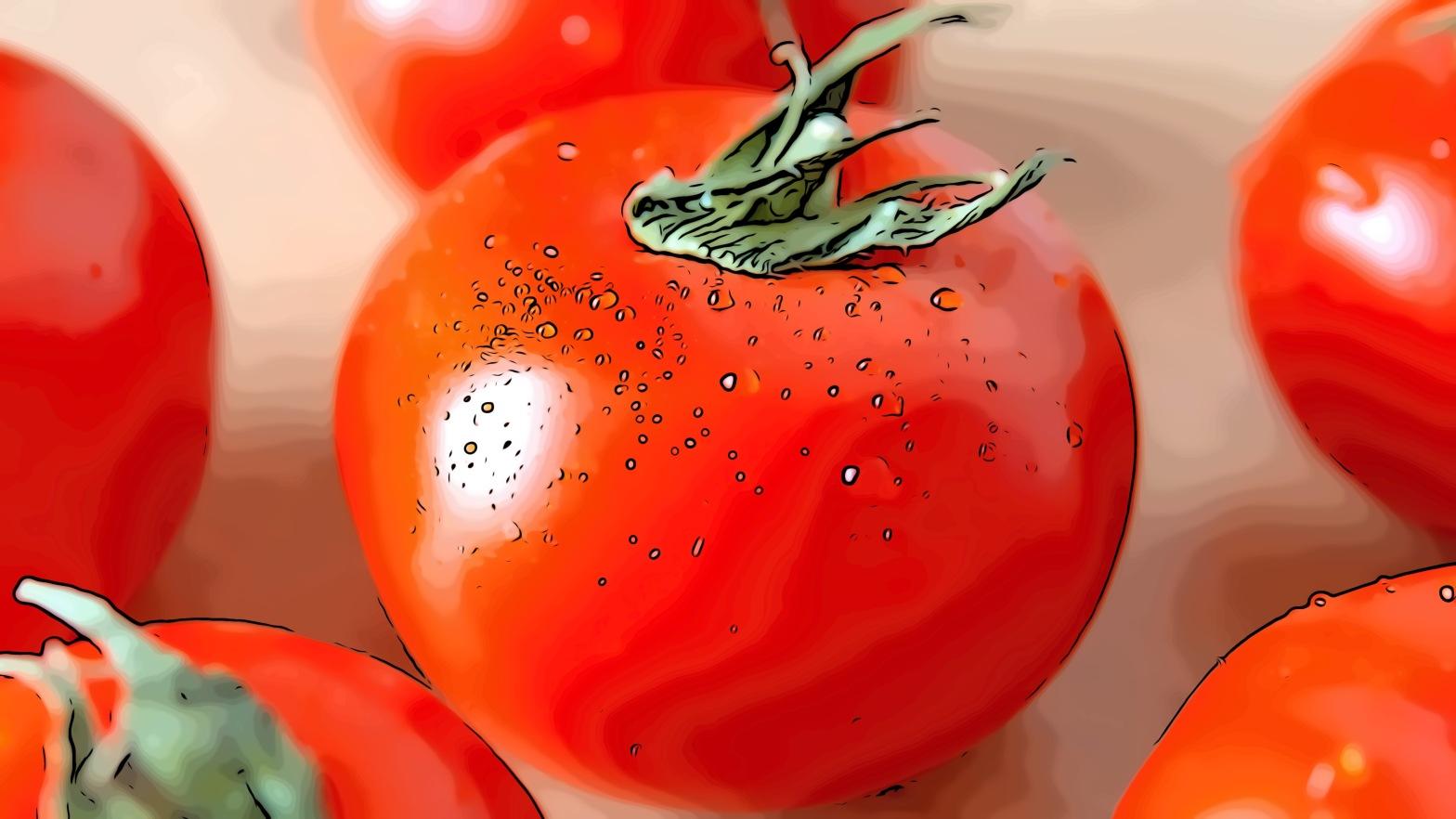 Tomato header comic