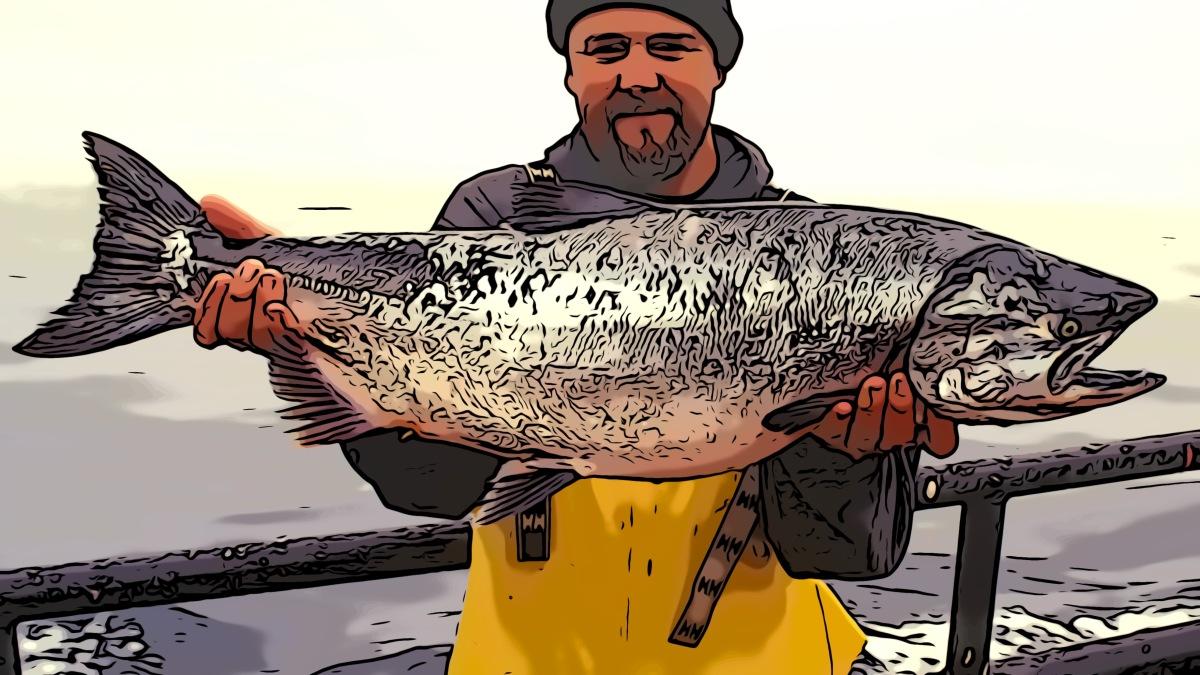 Salmon header comic