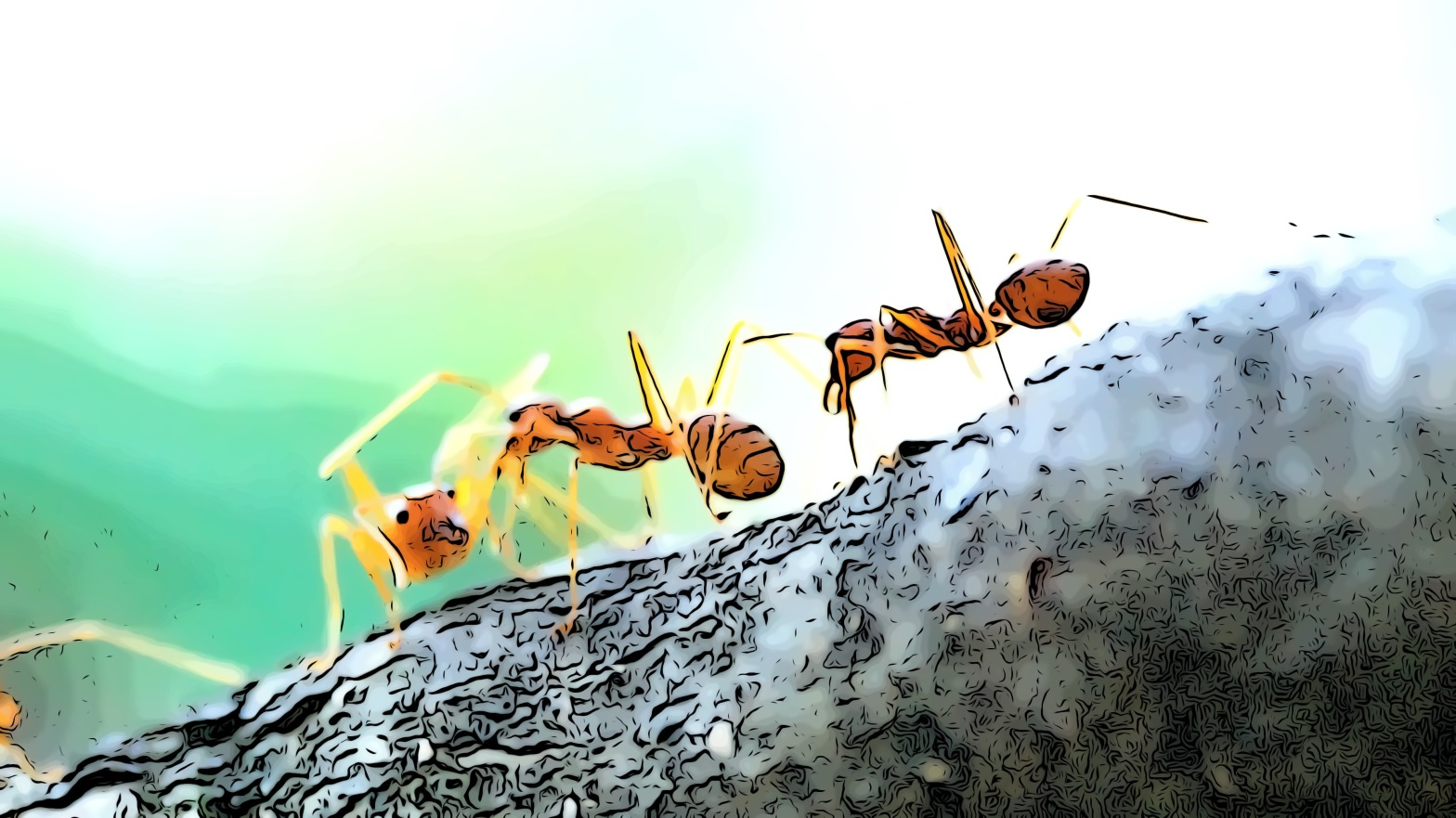 Ants header comic