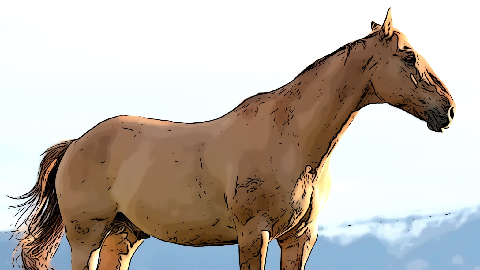 Horse header comic